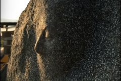 Artystyczne niepowtarzalne nagrobki granitowe (22)